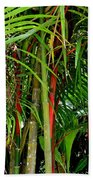 Red Bamboo Bath Towel