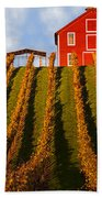 Red Barn In Autumn Vineyards Hand Towel