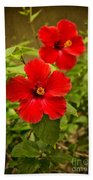 Red - Beautiful Hibiscus Flowers In Bloom On The Island Of Maui. Bath Towel