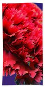 Red Beauty Carnation Bath Towel