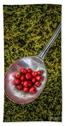 Red Berries Silver Spoon Moss Hand Towel