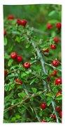 Red Berries Bath Towel