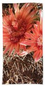 Red Cactus Bath Towel
