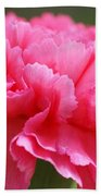 Red Carnation  Bath Towel