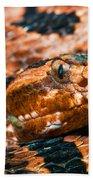 Red Carolina Pygmy Rattlesnake Bath Towel