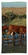 Red Cattle Hand Towel