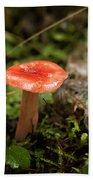 Red Coral Mushroom Bath Towel