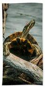 Red Eared Slider Turtle Bath Towel