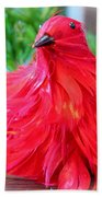 Red Feathers Bath Towel