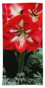 Red Flower With Starburst Bath Towel