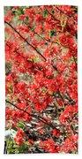 Red Flowers Bath Towel