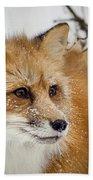Red Fox In Snow Bath Towel