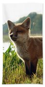 Red Fox Kit Bath Towel
