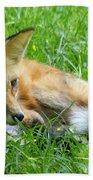 Red Fox Resting Bath Towel