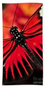 Red Heliconius Dora Butterfly Bath Towel