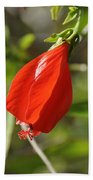 Red Hibiscus Bath Towel