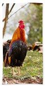 Red Jungle Fowl - Moa Hand Towel