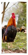 Red Jungle Fowl - Moa Bath Towel