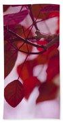 Red Leaves - Euphorbia Cotinifolia - Tropical Smoke Bush Bath Towel