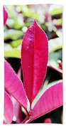 Red Leaves Bath Towel