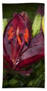 Red Lily 5 Bath Towel