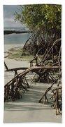 Red Mangrove Root Galapagos Islands Bath Towel