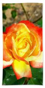 Red Orange And Yellow Rose Bath Towel