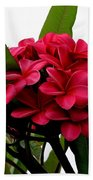 Red Plumeria Bath Towel