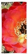 Red Prickly Pear Blossom Bath Towel