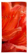 Red Rhodo Bath Towel