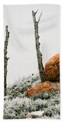 Red Rock Frost - Green Mountain - Wyoming Bath Towel