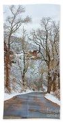 Red Rock Winter Road Portrait Bath Towel