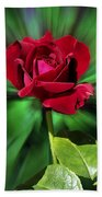 Red Rose Green Background Bath Towel