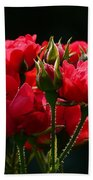 Red Roses Bath Towel