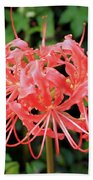 Red Spider Lily Hand Towel