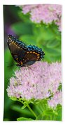 Red Spotted Admiral On Sedum - Vertical Bath Towel