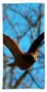 Red Tail Hawk In Flight Bath Towel