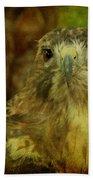 Red-tailed Hawk II Bath Towel