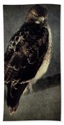 Red Tailed Hawk Bath Towel
