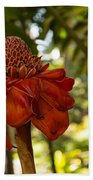 Red Torch Ginger Lily In Hawaii Bath Towel