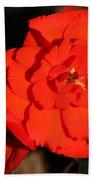Red Tuberous Begonia Flower Bath Towel