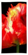 Red Tulip Blurred Bath Towel