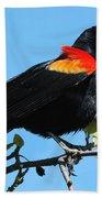 Red Wing Blackbird 2 Bath Towel