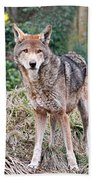 Red Wolf Alert Bath Towel