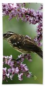 Redbud With Grosbeak Bath Towel