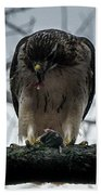 Redtail Hawk And Mouse Bath Towel