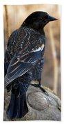 Redwing Blackbird Bath Towel
