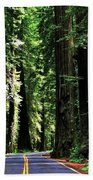 Redwood Highway Bath Towel