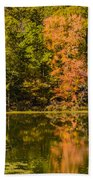 Reflection Of Autumn Bath Towel