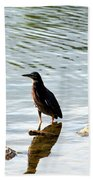 Reflection Of The Green Heron Bath Towel